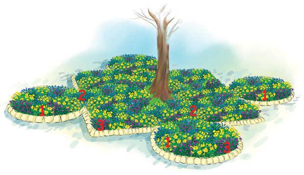 Как обустроить цветник под деревом: оформление приствольных кругов