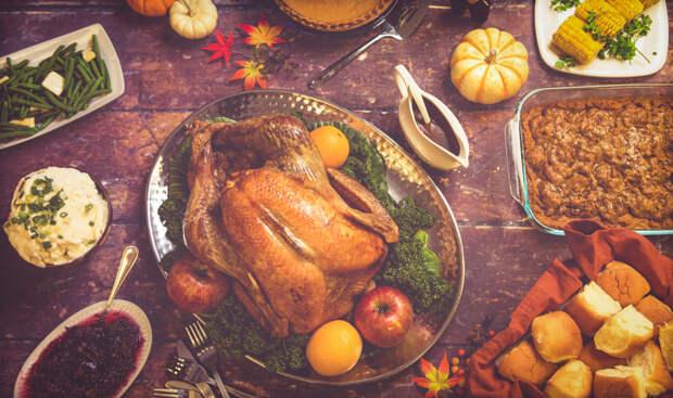 Turkey day by Michelle Bishop on 500px.com