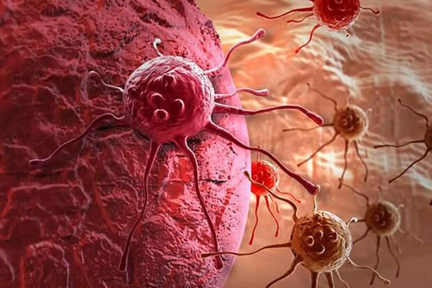 Картинки по запросу мифы о микроволновке онкология