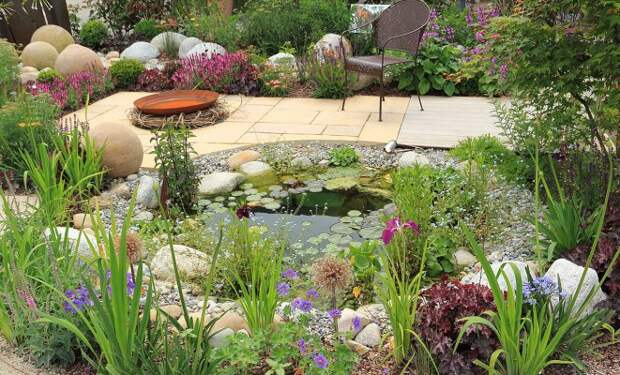 10 растений, которые стоит посадить на берегах водоемов и вдоль ручья