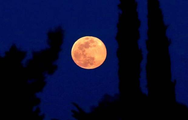 Ученых сбила с толку обнаруженная на Луне ржавчина