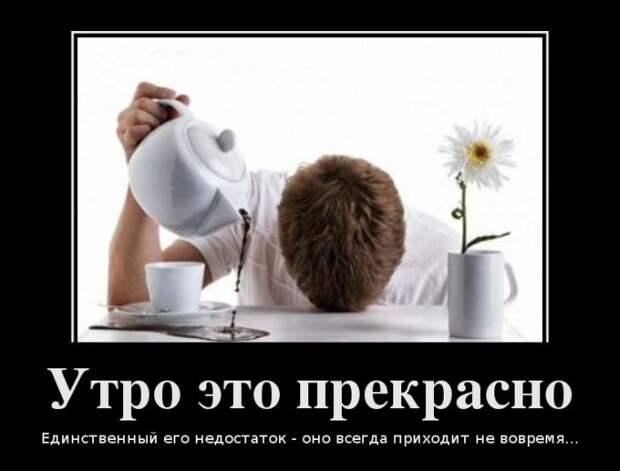 Демотиваторы: утро, пробки, женская дружба