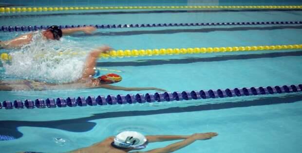 Юные пловцы из Ховрина победили на Всероссийских соревнованиях «Весёлый Дельфин»