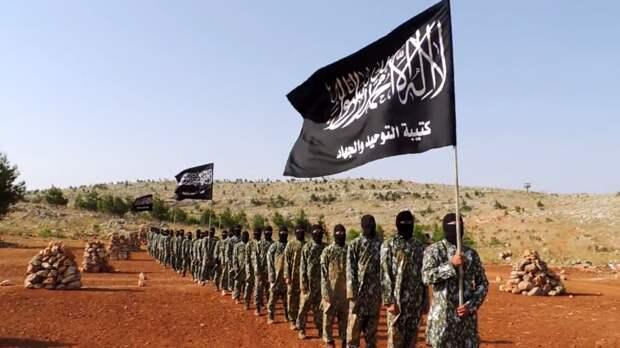 Разведка США заявила о возвращении «Аль-Каиды» в Афганистан