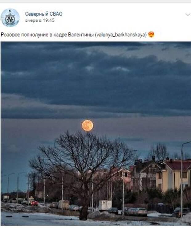 Фотокадр: жители Северного увидели «розовое полнолуние»