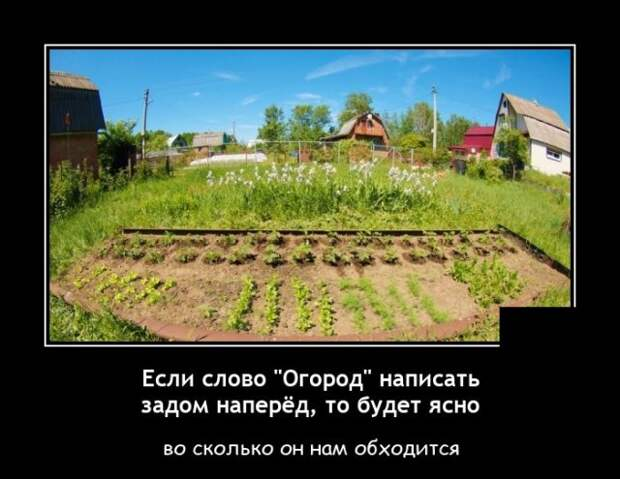Демотиватор про огород