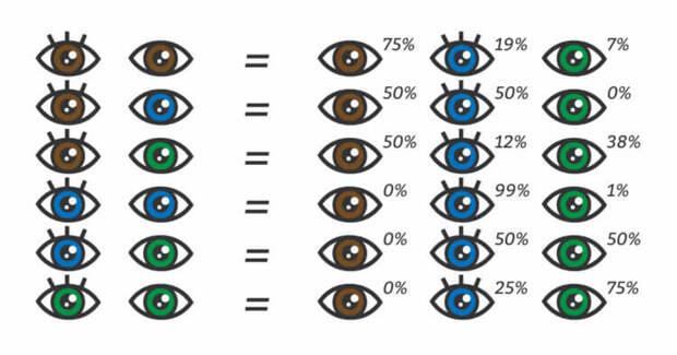 Почему глаза у людей разного цвета?