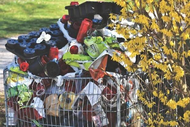 Сколько отходов мы производим?