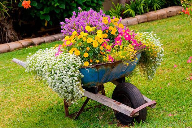 Дачные идеи для двора, как украсить двор