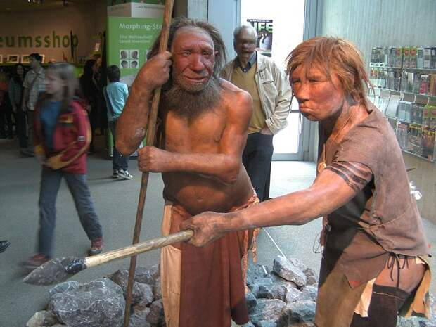 Реконструкция неандертальцев. Неандерталь, Дюссельдорф, Германия. Фото: UNiesert / Wikimedia Commons / CC BY-SA 3.0.