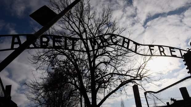 """""""Камер не было, все фото - фейк"""": Британские СМИ об освобождении Освенцима бойцами Красной армии"""
