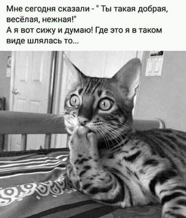 Парень сидит грустный. Его друг спрашивает: - Что случилось?...