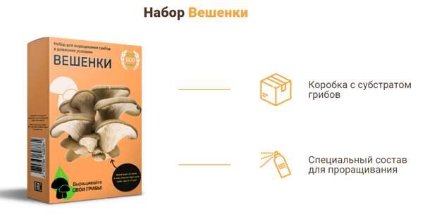 Выращивайте грибы у себя дома! Ничего сложного (Обзор грибницы)