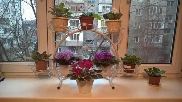 Полки для цветов своими руками