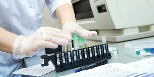 За сутки Москва делает 4 тыс исследований на коронавирус. Фото: mos.ru