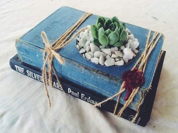 Жизни книги и растения.