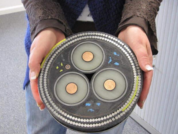 Сечение подводного кабеля интераесное, факты, фото