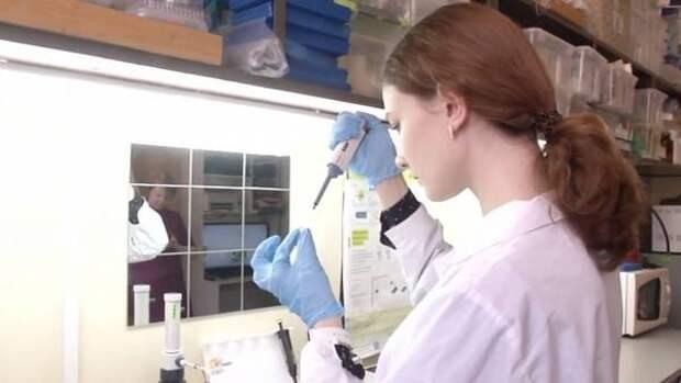Новосибирская школьница нашла связь между раком и мутацией гена