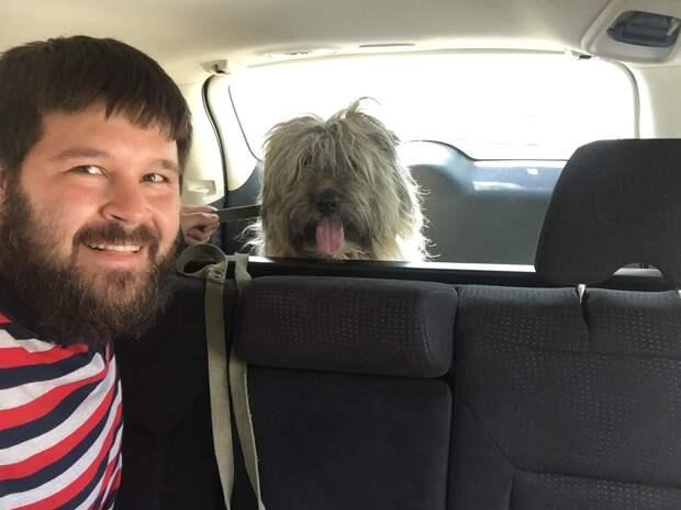 собака с хозяином