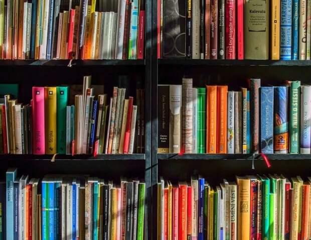 Библиотеки спрячут под ключ не предназначенные для детей книги