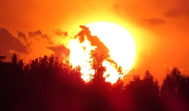 Температурный рекорд за последние 140 лет зафиксирован наСреднем Урале