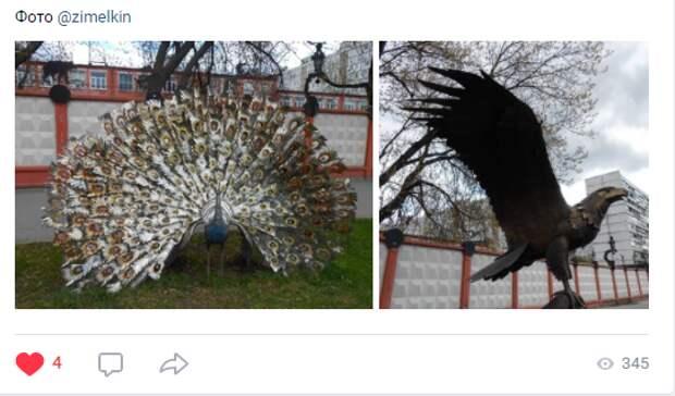 Фото дня: железные птицы на Енисейской