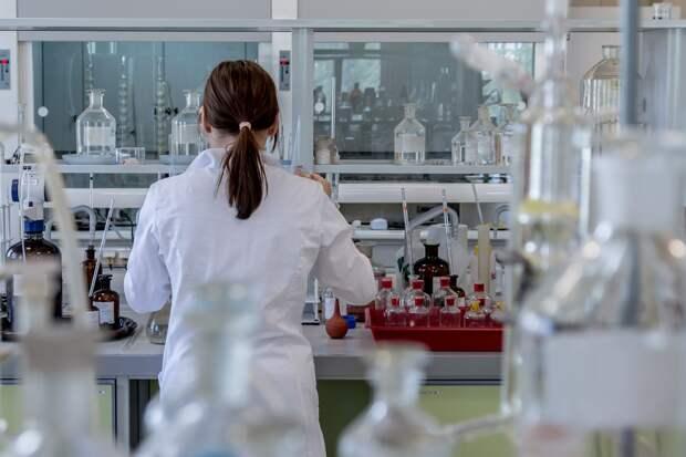 Учёные исследуют геном останков людей и животных, найденных археологами в Крыму