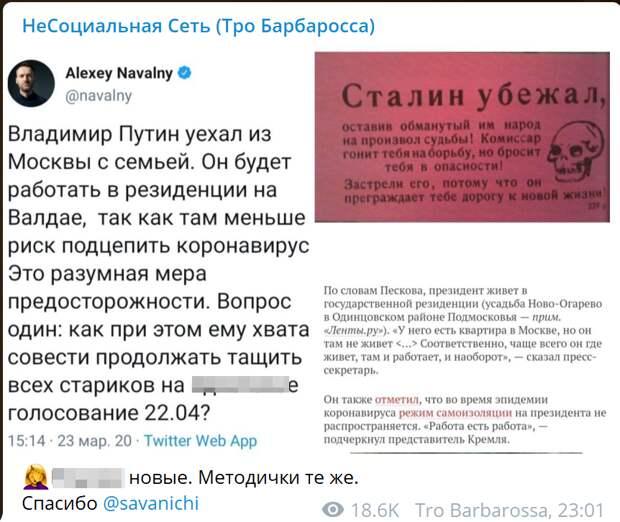 """""""Путин уехал из Москвы с семьей"""": """"Сенсацию"""" от Навального сравнили с немецкой листовкой"""