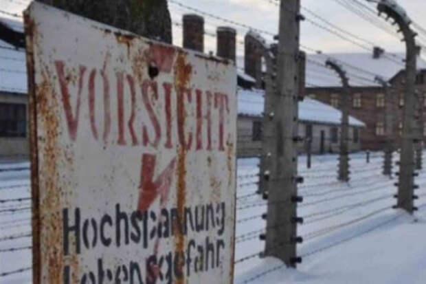 Поляки открыли списки надзирателей Освенцима
