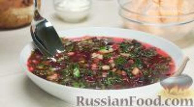 Фото приготовления рецепта: Ботвинья - шаг №19