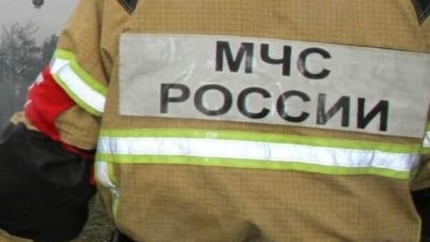 Сотрудники МЧС Рязанской области спасли почти 30 сапсерферов на Оке