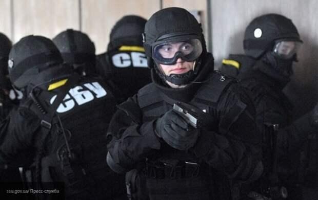 СБУ всерьез займется интервью Гордона с Поклонской и Стрелковым