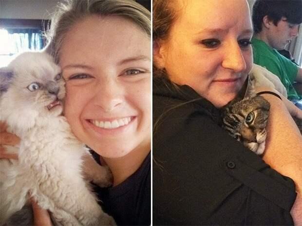 Да что же это такое? 15 котов которые терпеть не могут целоваться обниматься, без кота и жизнь не та, коты и кошки, приколы, приколы с котами, смешные коты и кошки, юмор