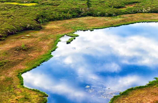 Здесь и далее: природа Ловозерского района
