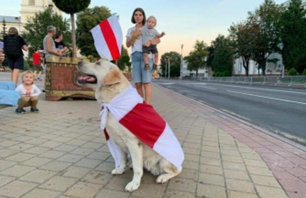 Белоруссия: не совсем по Шарпу