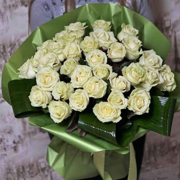 33-wite-roses-500x500