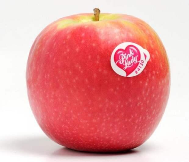 1. наклейка, фрукты