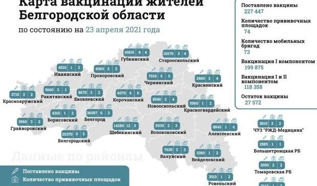Гладков представил карту вакцинации вБелгородской области