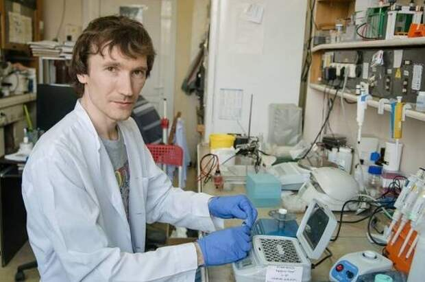 Ученый из Новосибирска усомнился в появлении сибирского штамма коронавируса