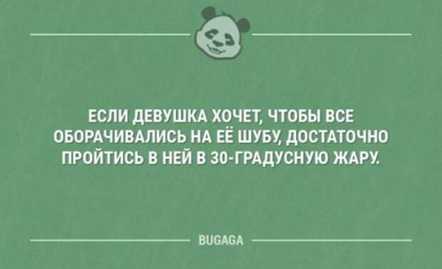Свежие анекдоты (23 шт)