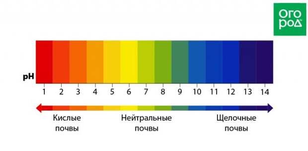 Шкала pH почвы