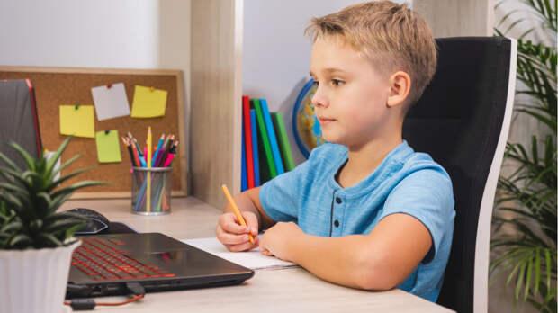 Ортопед рассказала, каким должен быть идеальный стол школьника