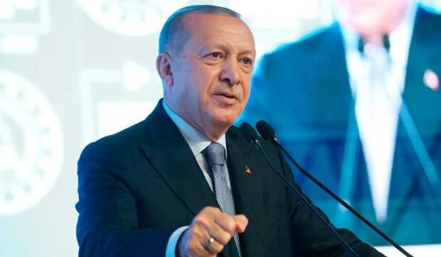 Российский депутат: Эрдоган пытается шантажировать Путина встречей с Зеленским