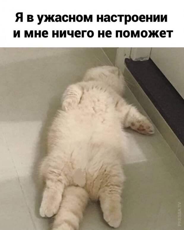 Когда настроение не очень