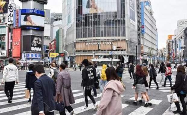 Курилы: Японцы смотрят на острова, и едва сдерживают слезы