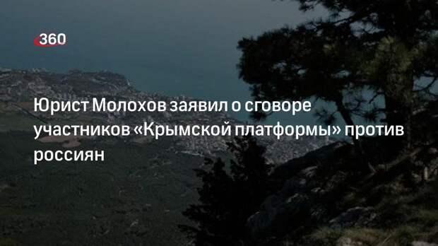 Юрист Молохов заявил о сговоре участников «Крымской платформы» против россиян