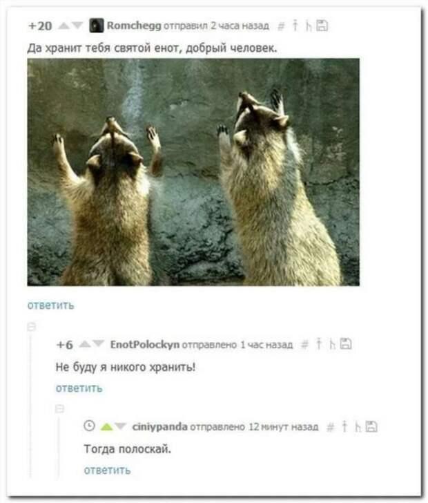 Смешные комментарии. Подборка chert-poberi-kom-chert-poberi-kom-12350203102020-12 картинка chert-poberi-kom-12350203102020-12