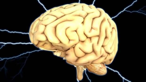 Чешские нейрофизиологи доказали положительное влияние музыки Моцарта на мозг