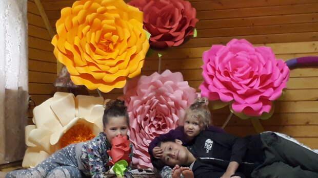 Жители Тверской области украшают свои дома ростовыми цветами