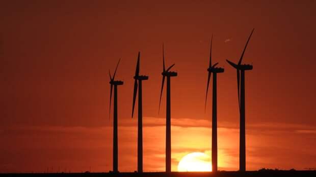 Кабмин РФ изучит варианты адаптации экономики к зеленой энергетике